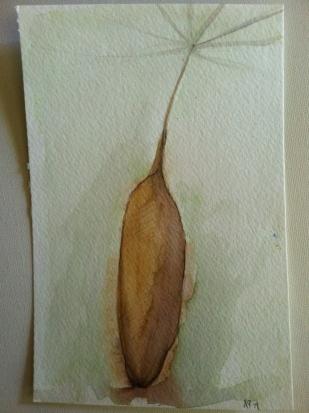Dandelion II - Seed